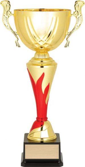 Presentation Cups