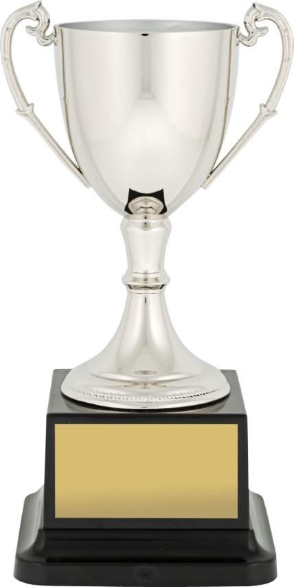 Major Cup Silver 170mm