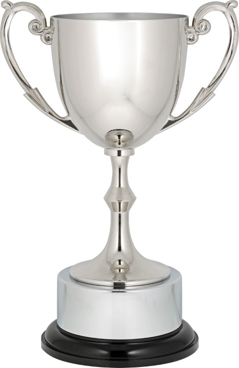 Recognition Cup 230mm