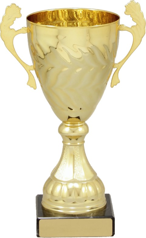 Eternal Cup Gold 220mm