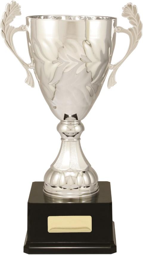 Eternal Cup Silver 440mm