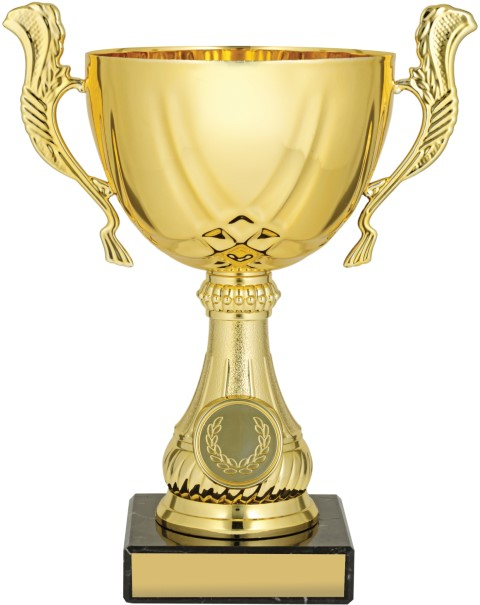Gold Lucca Cup 190mm