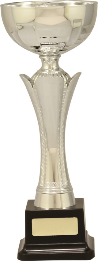 Cup Equity Silver 260mm