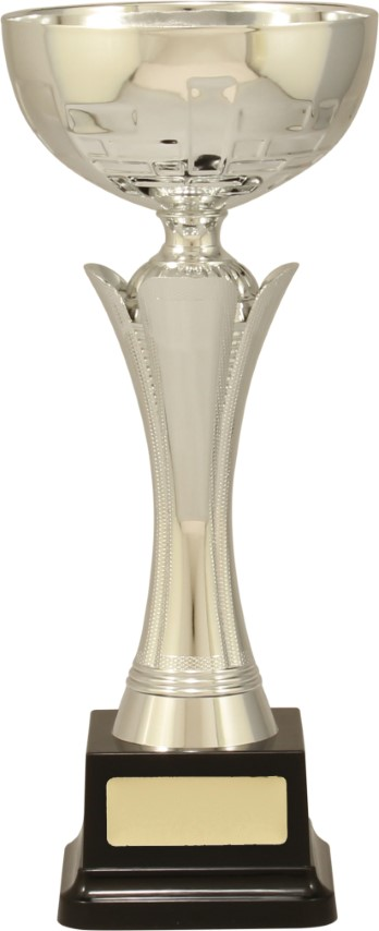Cup Equity Silver 290mm