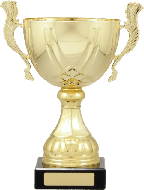 Cup Gold Turin 260mm