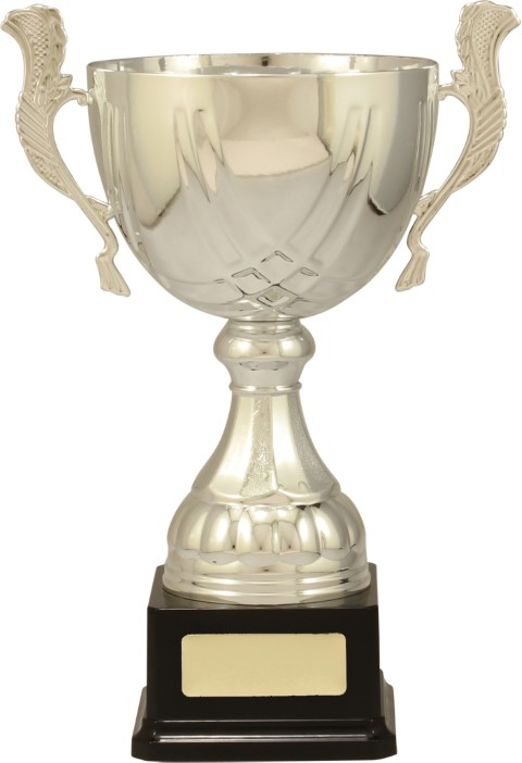 Cup Silver Turin 290mm