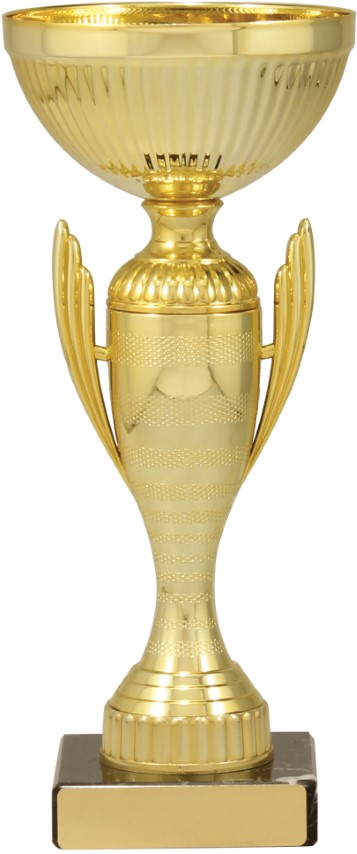 Guardian Cup Gold 235mm