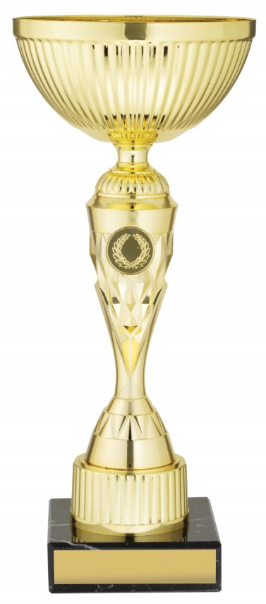 Gold Vector Cup 330mm