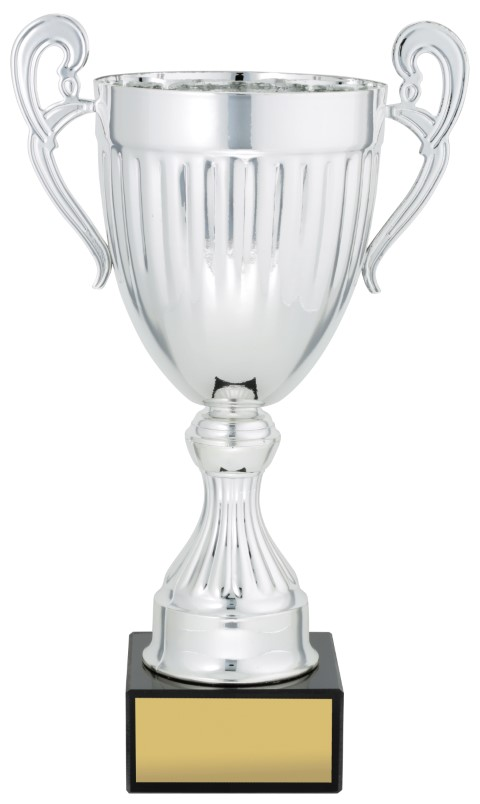 Endeavour Cup Silver 270mm