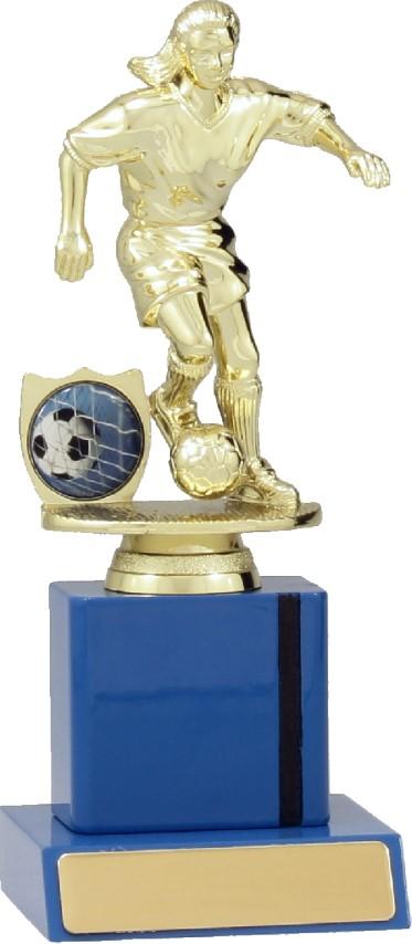 Soccer Blue Timber 190mm