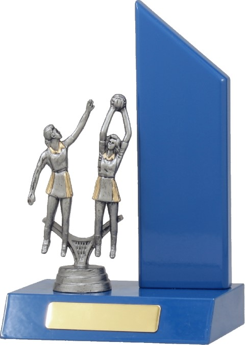 Netball Blue Wing 200mm