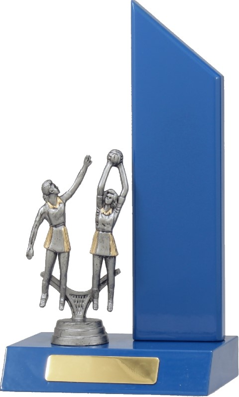 Netball Blue Wing 235mm